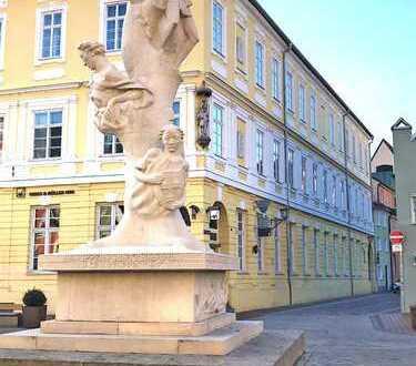 Sanierte 3,5-Zimmer-Wohnung mit neuer EBK in Landshut