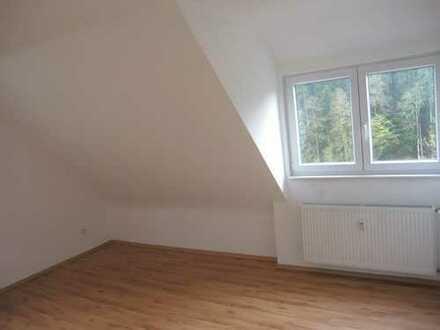 3-Zimmerdachwohnung in Schiltach-Hinterlehengericht