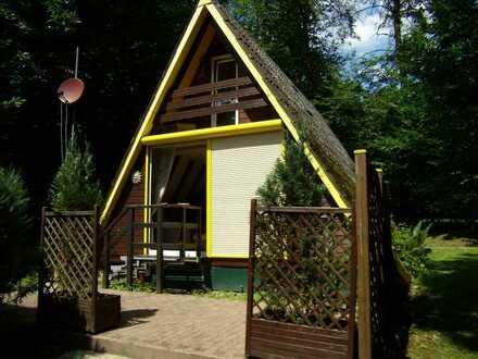 Schönes Ferienhaus im Pfälzer Wald