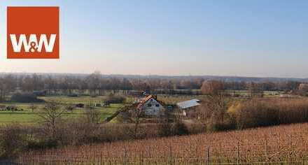 Weingut mit ca. 12,5 ha in Baden Baden mit vielen Extras.
