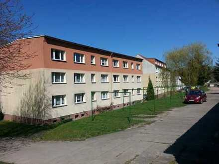 3 Raum Wohnung im Altneubau am Stadtrand