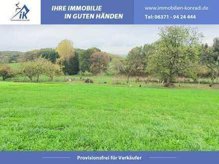 Grundstück in Ortsrandlage von Börsborn