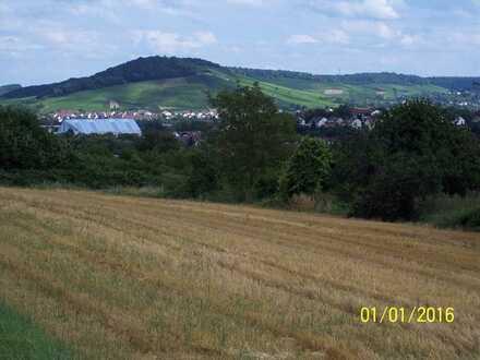 Heilbronn-Neckargartach Bauplatz Bernhäusle, Reserviert