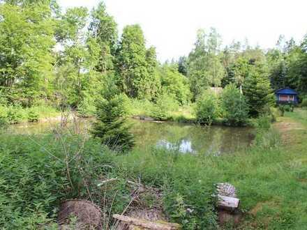 Teichanlage für Angelfreunde