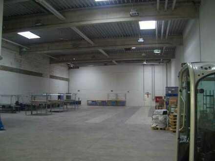 PROJECTA: ca. 1.200 m² Lagerhalle | Rampentore | 8,5 m UKB Hallenhöhe | Büroanteil| 0174 208 317 5