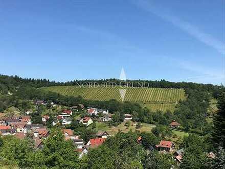 Biologischer Weinberg - 5,23 ha mit Baugrundstück. Lage Baden-Baden/Gernsbach.