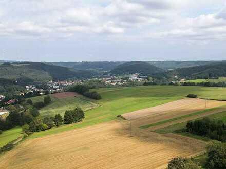 Landschaftliche Wiesenfläche +++ Paket mit 95.277m² (9,5 ha)