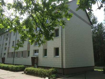 Frisch renovierte 4 Zimmer Wohnung!