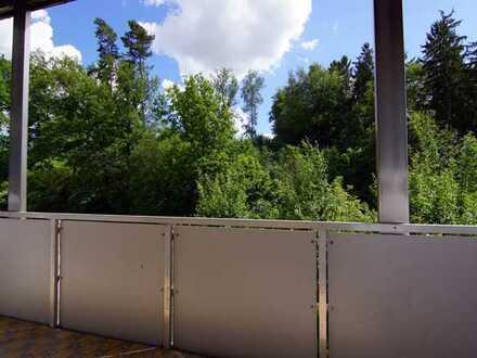 Ansbach/Wallersdorf: 3 Zi. Wohnung Waldrand Lage. Nähe Industriegebiet Brodswinden sofort frei!