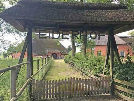 Historischer Reetdachhof in Alleinlage an der Eider