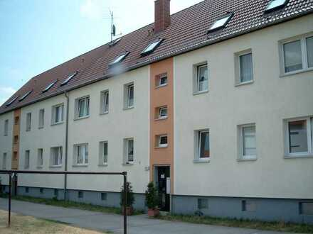3 Raum Wohnung in Wiesenau zu vermieten
