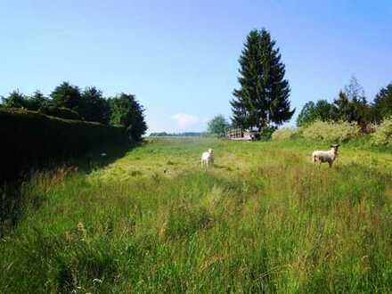 Ruhig gelegenes Grundstück in Weißensand