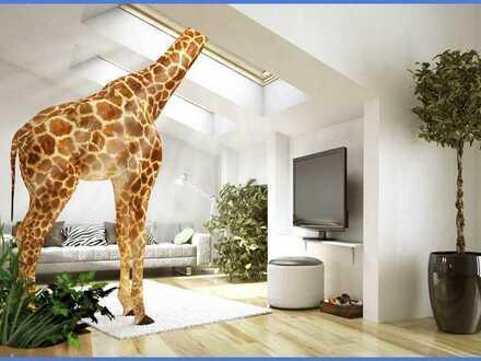 Wohnung mit Weitblick!  Unser Wohntraum wird wahr!