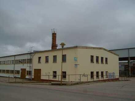 Kreissadt Seelow - diverse Büro und Werkstatträume