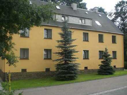 2- Raum Wohnung in Gornau!