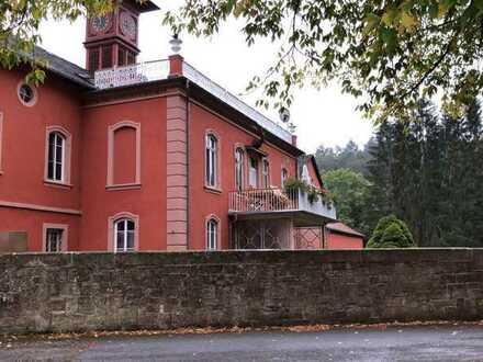 Wohnen - exklusiv und stilvoll - Loft im Herrenhaus der Eisenschmelz