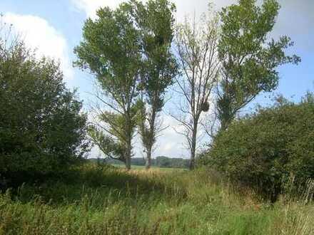 Grundstück am Dorfrand mit Blick auf Wiesen und Felder.