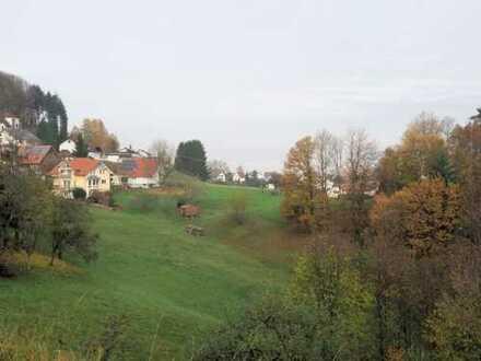 Traumaussicht - viel Platz - riesiges Grundstück... Ihr Zuhause im wunderschönen Bühlertal!