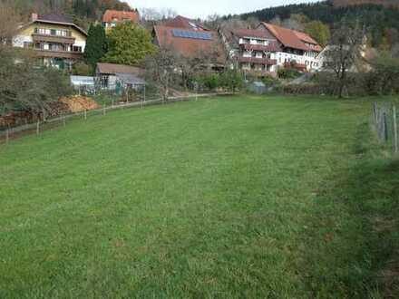 Schwarzwald Idyll - Baugrundstück in Goldmedaillenlage