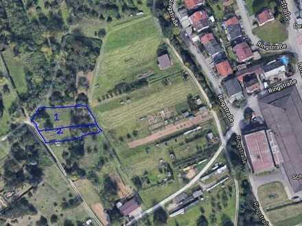 Schöne Grundstückle mit Weinberg Aussicht in Weinstadt Schnait