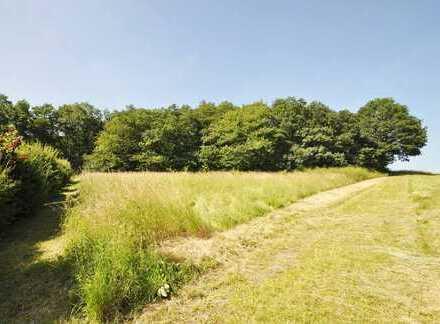 Neichen: Baugrundstück in ruhiger, idyllischer Ortsrandlage zu verkaufen