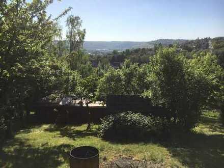 Esslingen-Hegensberg: Gartengrundstück mit 2 Hütten