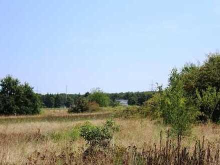 3 einzelne landwirtschaftliche Grundstücke in Philippsburg zu verkaufen