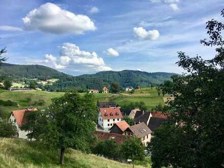Ehem. Gasthof mit 2Wohnungen, Garten, Scheune STATUS: RESERVIERT