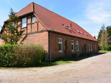 1-Raum-Wohnung in 18320 Neuenrost
