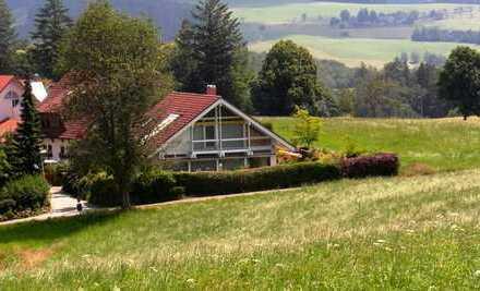 Modernes HUF Fachwerkhaus mit Feldbergblick in St. Peter