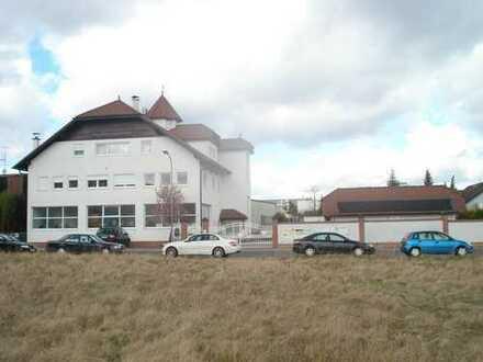 Helle Halle mit kl. Büro 190 qm Hainburg
