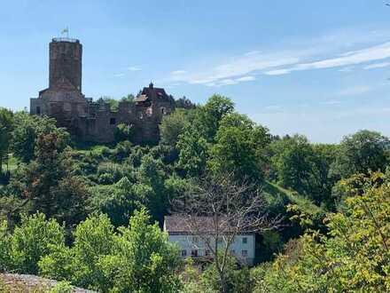 *** BAUGRUNDSTÜCK vis a vis zur Burg