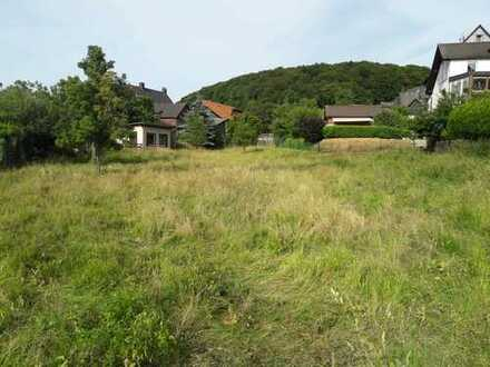 Baugrundstück bis 1000 m² möglich