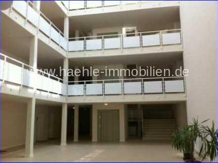 Großzügiges und helles 1 Zimmer Apartment in Uninähe - frei ab 01.04.2021!