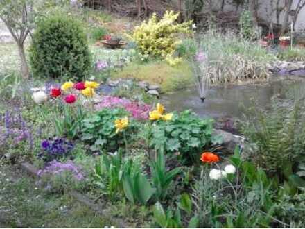 Gartengrundstück in Oderberg ruhig gelegen