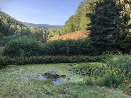 Schöner Bungalow mit zwei Zimmern + Terasse im Biosphären Reservat Thüringer Wald nähe Unterschönau