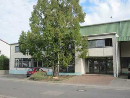 Gepflegte Büro- und Ausstellungsflächen mit insgesamt ca. 1.038 m² ab sofort günstig zu vermieten!