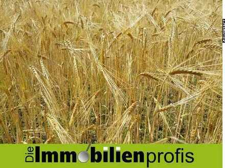 Landwirtschaftliche Flächen mit ca. 118.000 m² in Wernesgrün i. Vogtland
