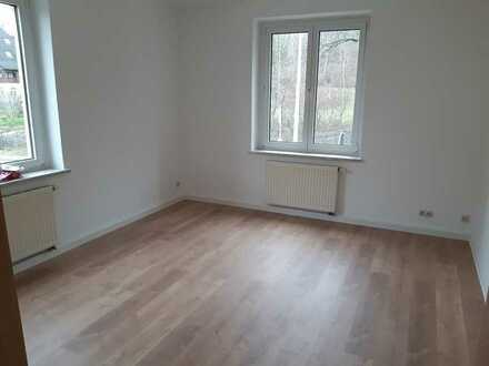 Tolle 4 Zimmer Wohnung komplett renoviert und 1,5 Monate mietfrei