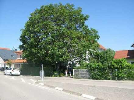 Wohnung in Lachen-Speyerdorf