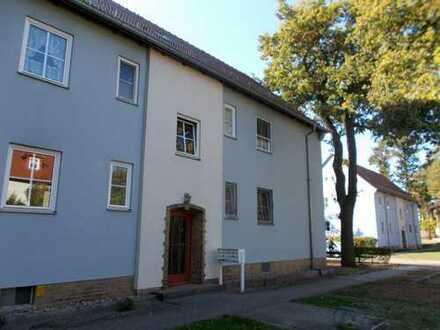 Bild_neu renovierte Wohnung im idyllischen Plaue