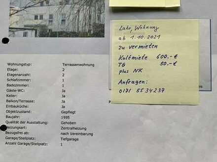 2 Zimmer Dachterrassen-Wohnung mit Einbauküche in Lahr/Schwarzwald