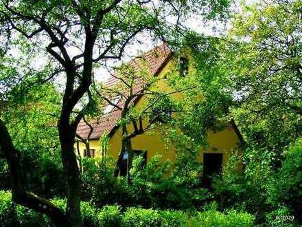 Charaktervolles Einfamilienhaus mit Obstgarten in ruhiger Lage auf Westlicher Höhe, Flensburg