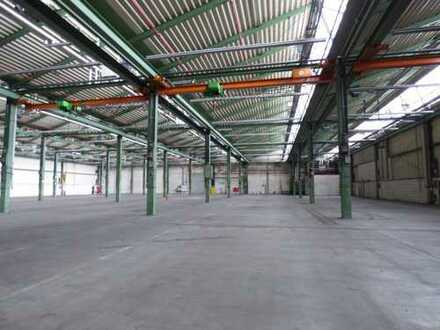 PROVISIONSFREI   Befahrbare Hallenflächen zu vermieten   sofort verfügbar