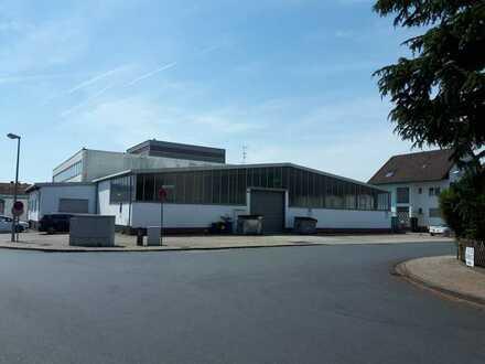 EG Halle - 775 m² ebenerdig + 70m² Büro und 54m² Archiv ** Nähe FLUGHAFEN FRANKFURT** TOP Lage