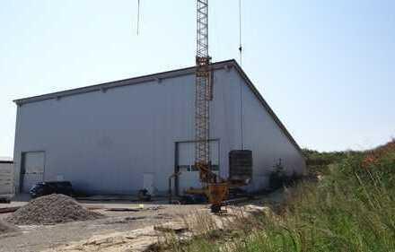 *Interessante Gewerbehalle, halbe Hallenfläche mit 410 m² zu vermieten*
