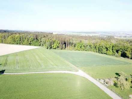 6,64 ha attraktive Ackerflächen in der Großgemeinde Schemmerhofen