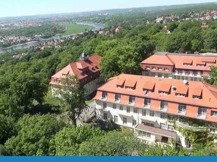Klein und fein, 1-Zi.-Apartment in Oberloschwitz
