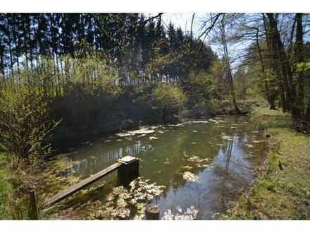 NATUR PUR! Freizeitgrundstück mit Wald, Hütte und 2 Teichen auf über 4.000 m² im Raum-Rödental