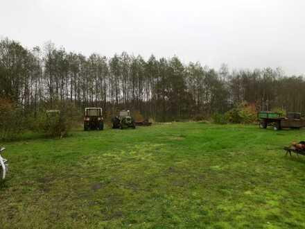 Grundstück - Weidefläche in Ovelgönne - Barghorn